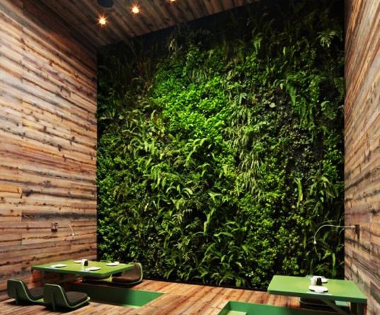 Zöld étterem: a környezetbarát munkatér