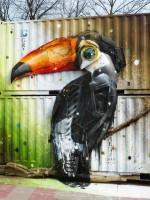 papagáj szemétből