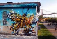 szemétszobor pillangó