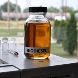 Mi lesz veled biodízel?