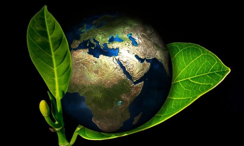 Föld napja a környezetvédelmi és éghajlati műveltség jegyében